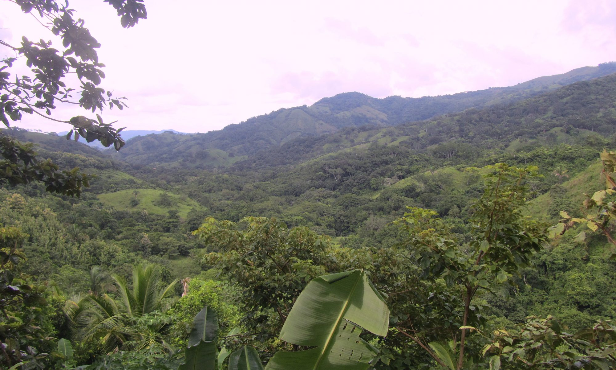 Natur in Costa Rica