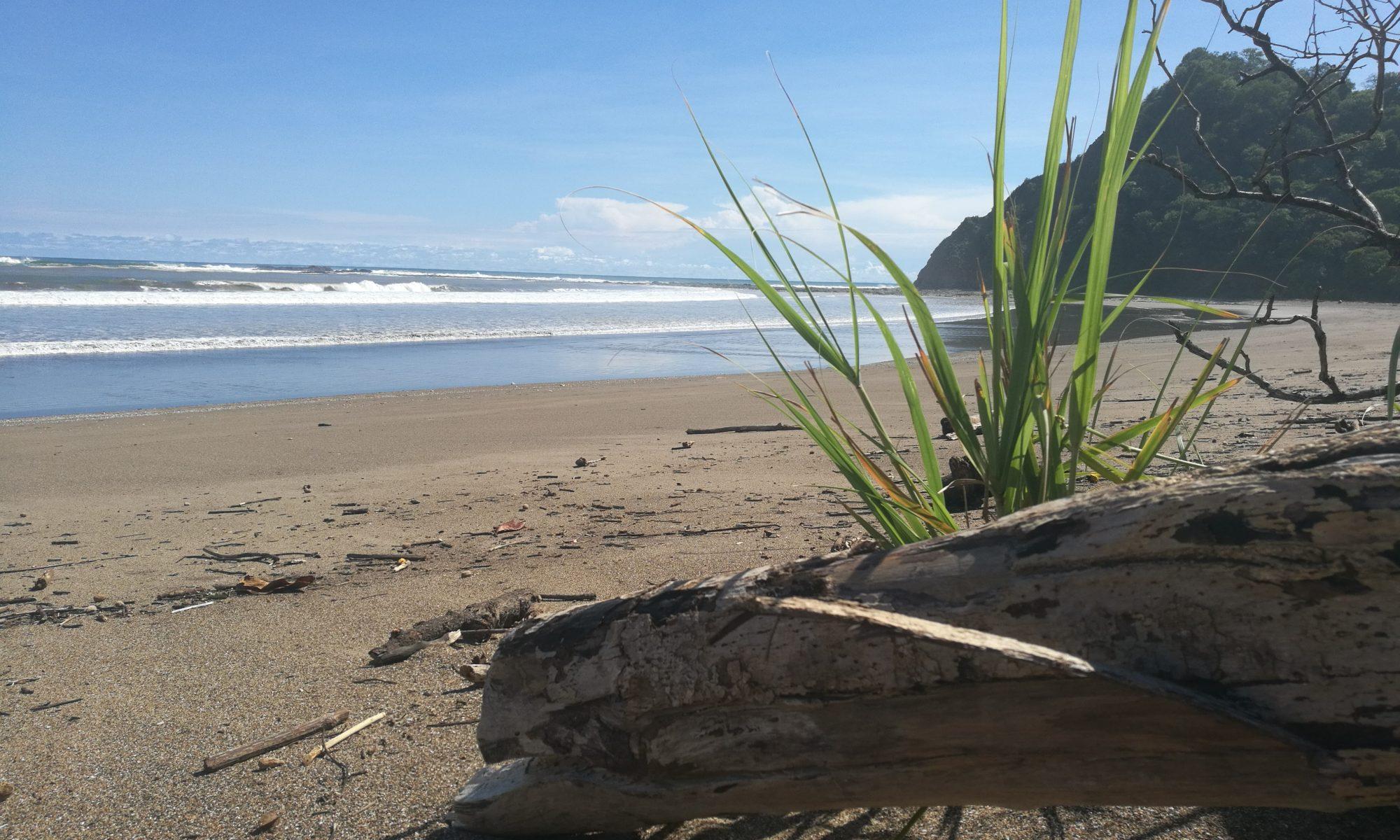 saubere Strände in Costa Rica