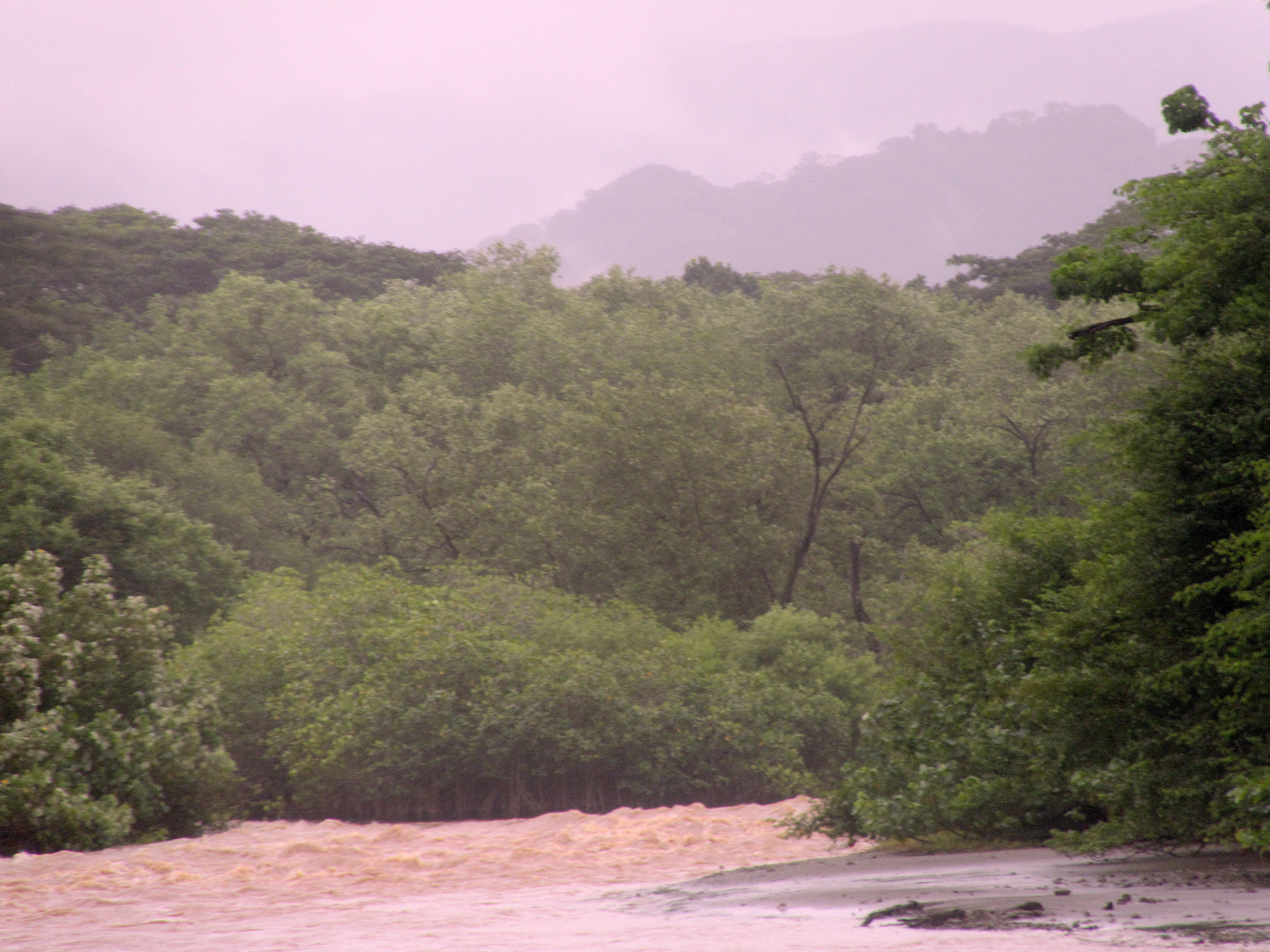tropischer Regen Costa Rica