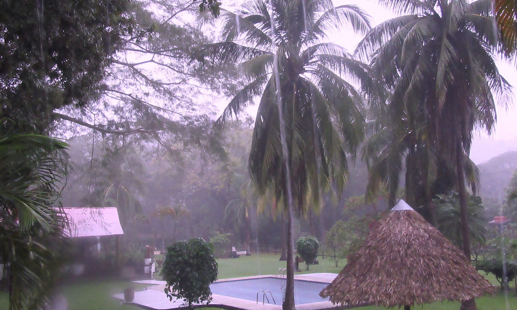 Tropenregen Costa Rica