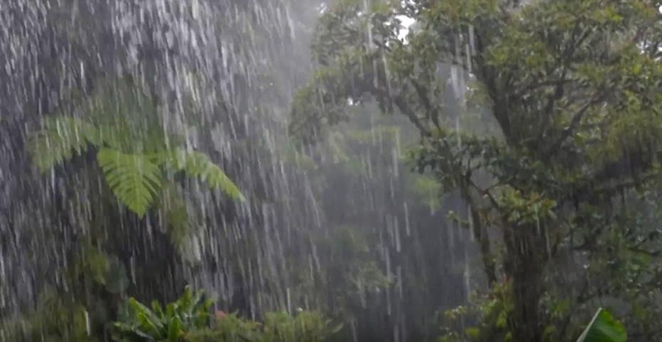 Regenzeit Costa Rica